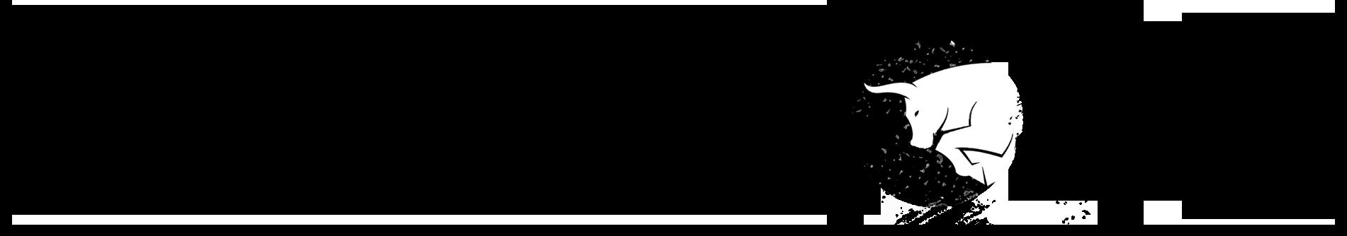 STEVE REZO Logo